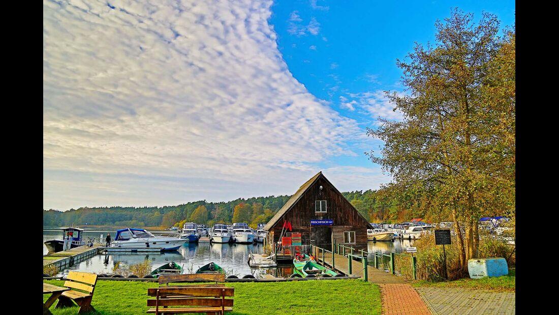An der Marina Eldenburg gibt's schicke Boote und regionalen Fisch.