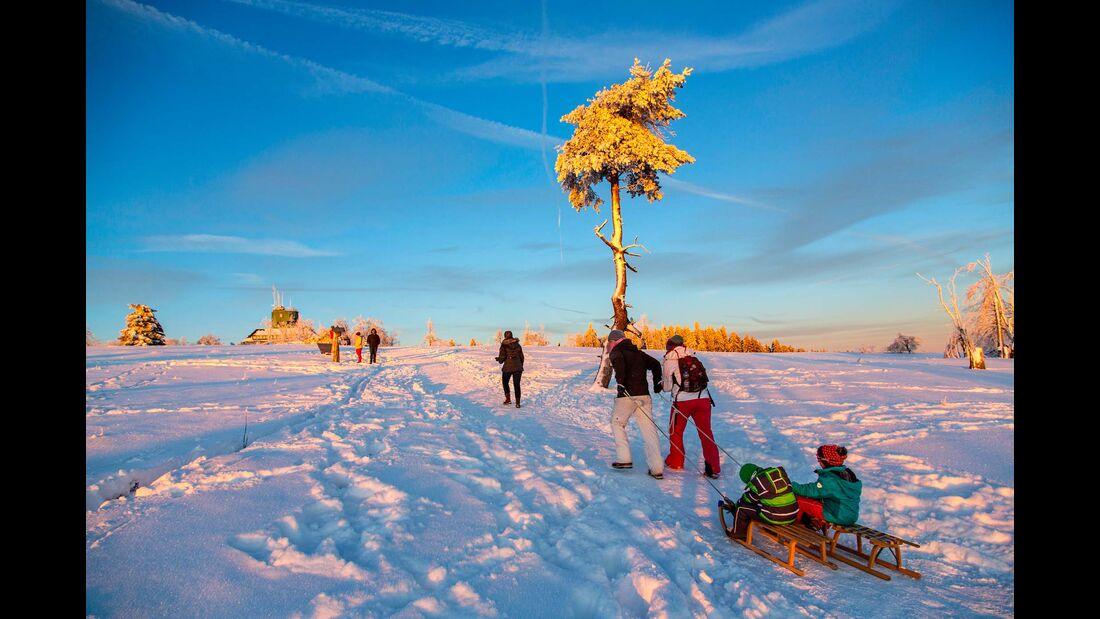 Auf meinem Schlitten bin ich Kapitän –  die ganze Familie unterwegs im Schnee.