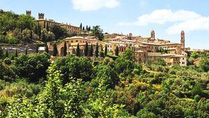 Aussicht auf das Weinsstädtchen Montalcino