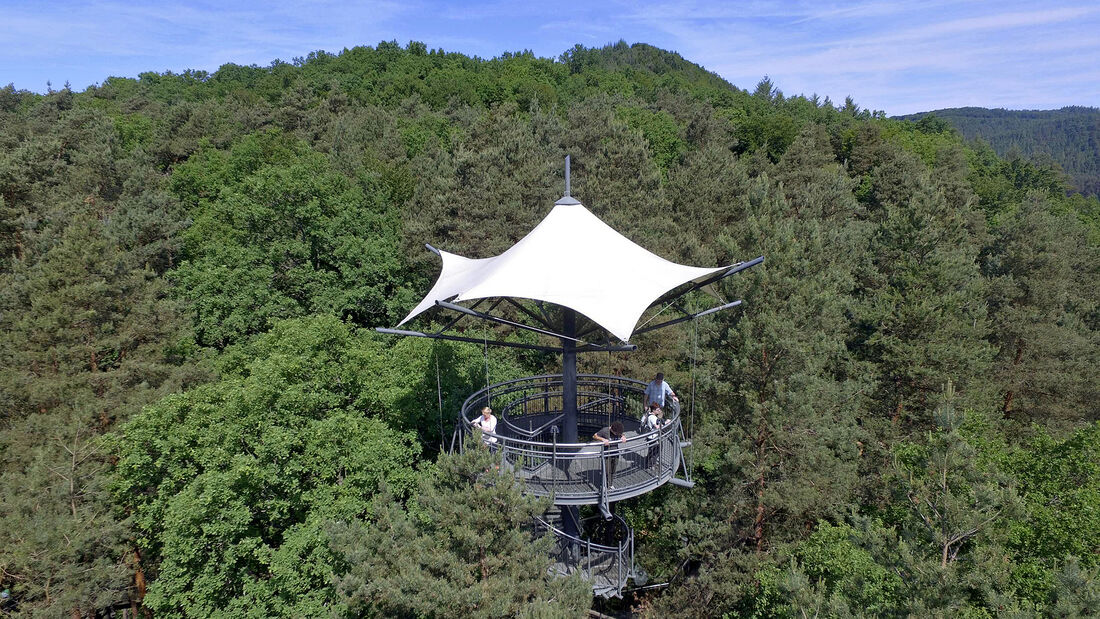 Baumwipfelpfad Biosphärenrservat Pfälzerwald