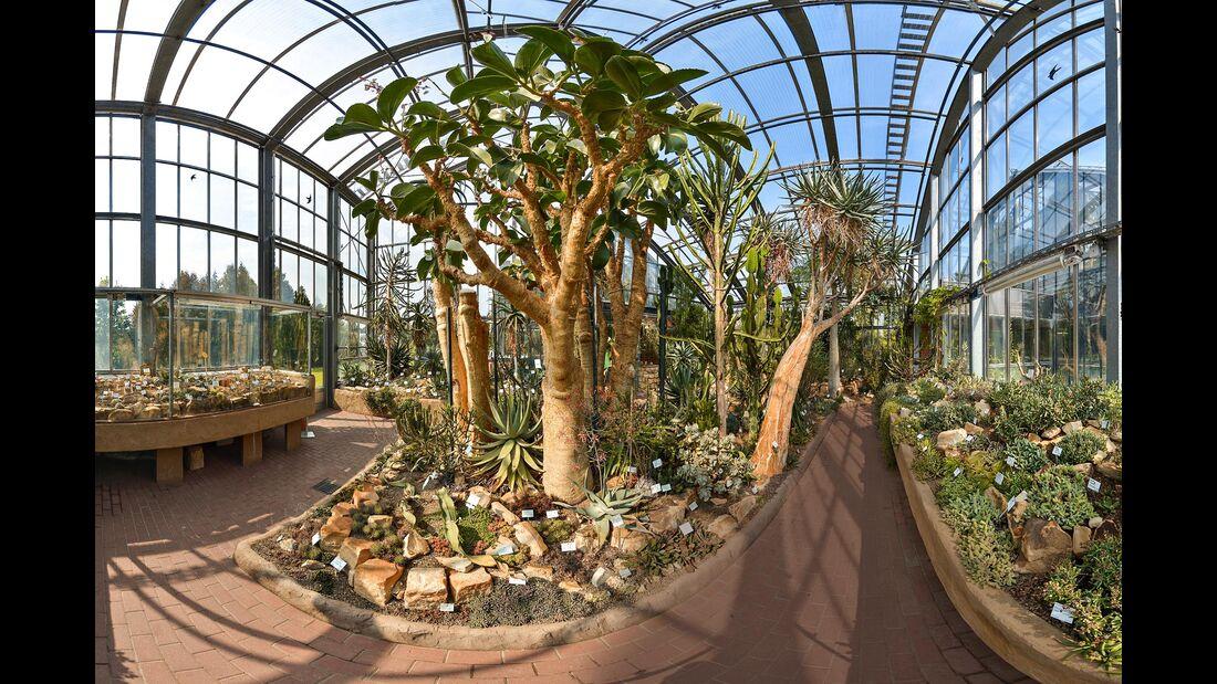 Botanische Garten Kiel