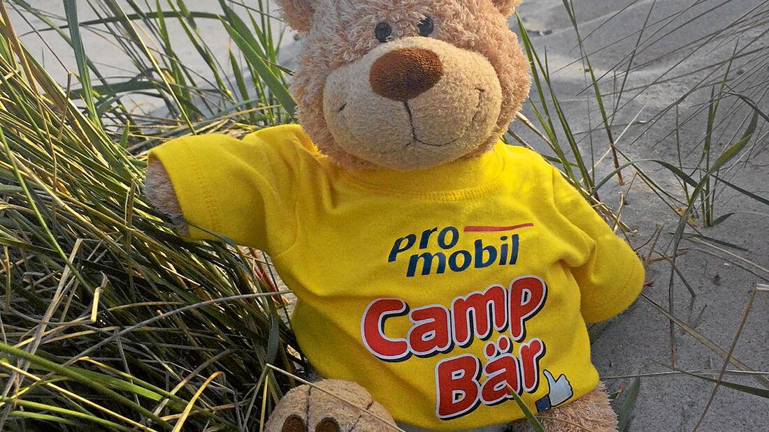 CampBär an der Ostsee