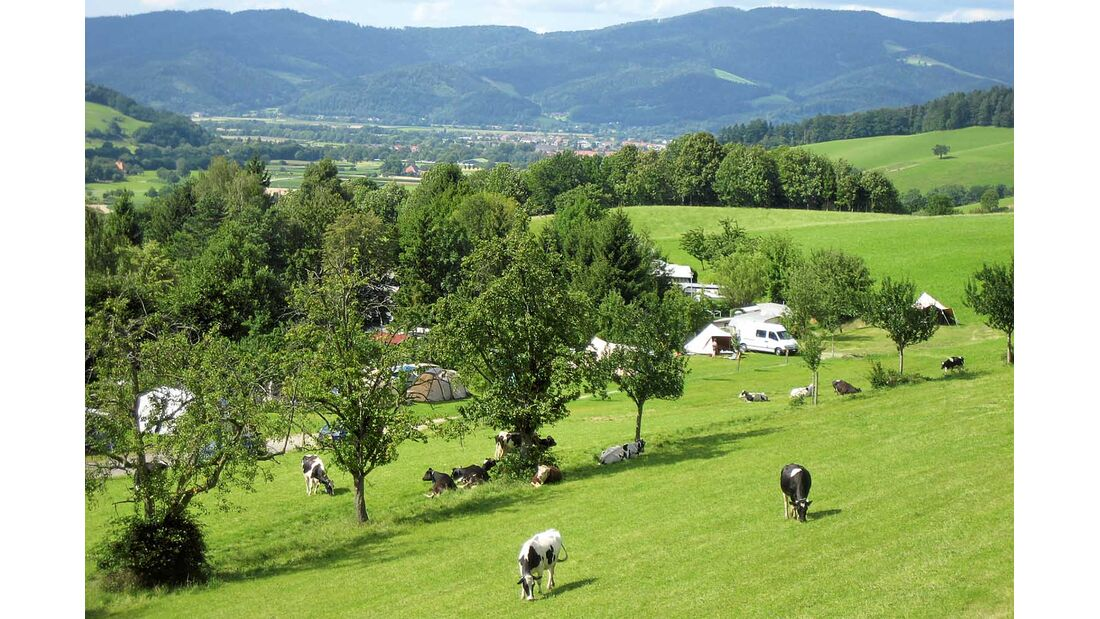 Camping Kirnermarteshof in Oberried