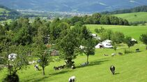 Camping Kirnermarteshof in Oberried