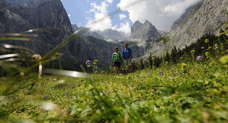 Camping Resort Zugspitze, Wandern, wiesen