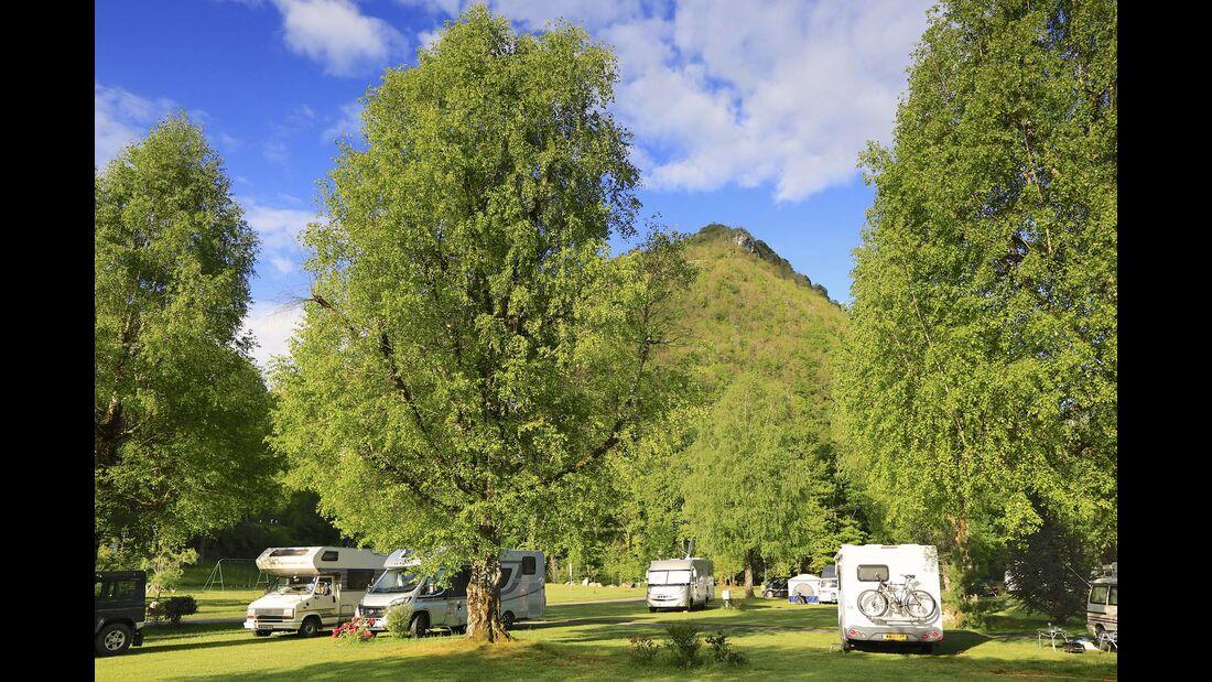 Camping de la Fôret: umrahmt  von Wald, dazu gärtnerisch gestaltet.