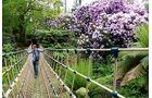 Der Dschungel in den Lost Gardens.