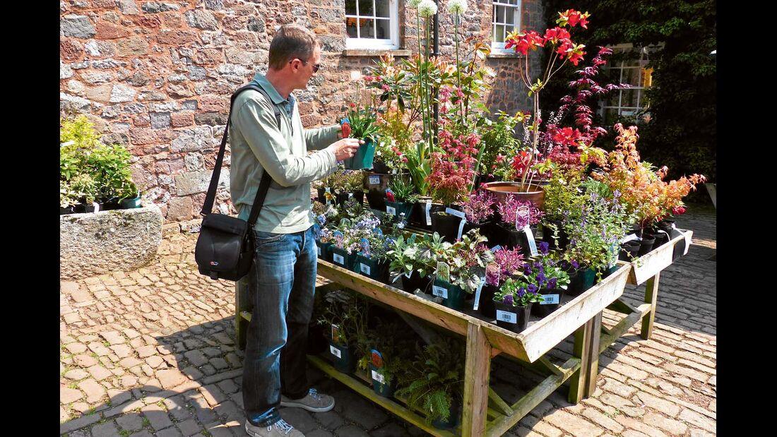 Der Plant Sales bei jedem Park fordert von mobilen Blumenfreunden viel Selbstdisziplin.