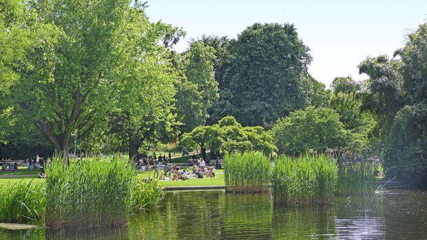 Der Stadtgarten ist eine Oase für Freiburgs Bürger und Gäste – auf der rund 2,6 Hektar großen Fläche gibt es zudem Konzerte und Theateraufführungen.