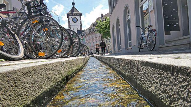 Die Gesamtlänge der Freiburger Bächle beträgt  15,5 Kilometer – 9,1 davon verlaufen überirdisch.