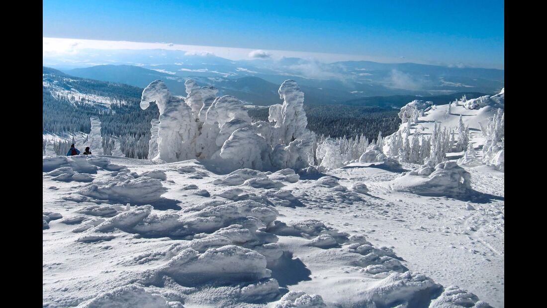 Die Schneemandl verneigen sich – winterliches Szenario unterm blauen Himmel am König der Bayerwaldberge, dem Großen Arber.