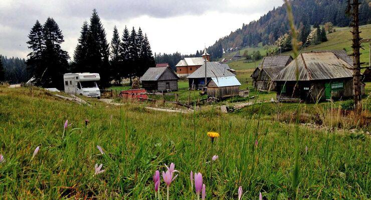 Draculatours.de bietet eine zusätzliche Tour in die Karpaten/Rumänien