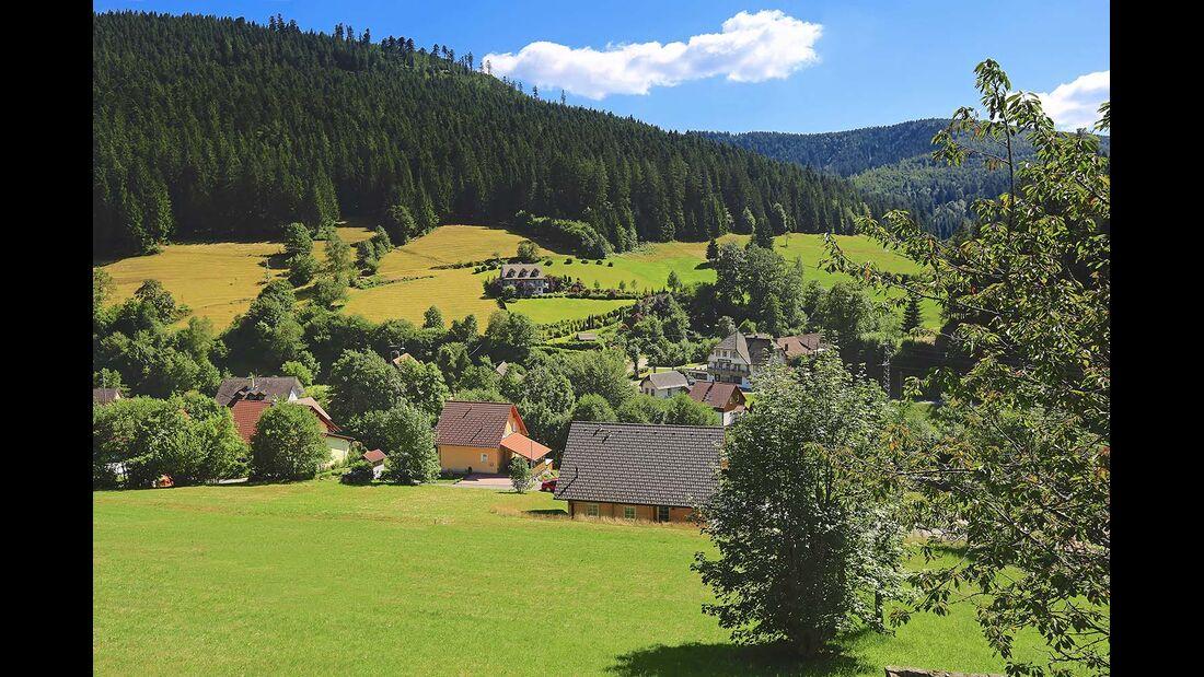Dunkler Tann umrahmt das Dorf Holzwald im Wolftal