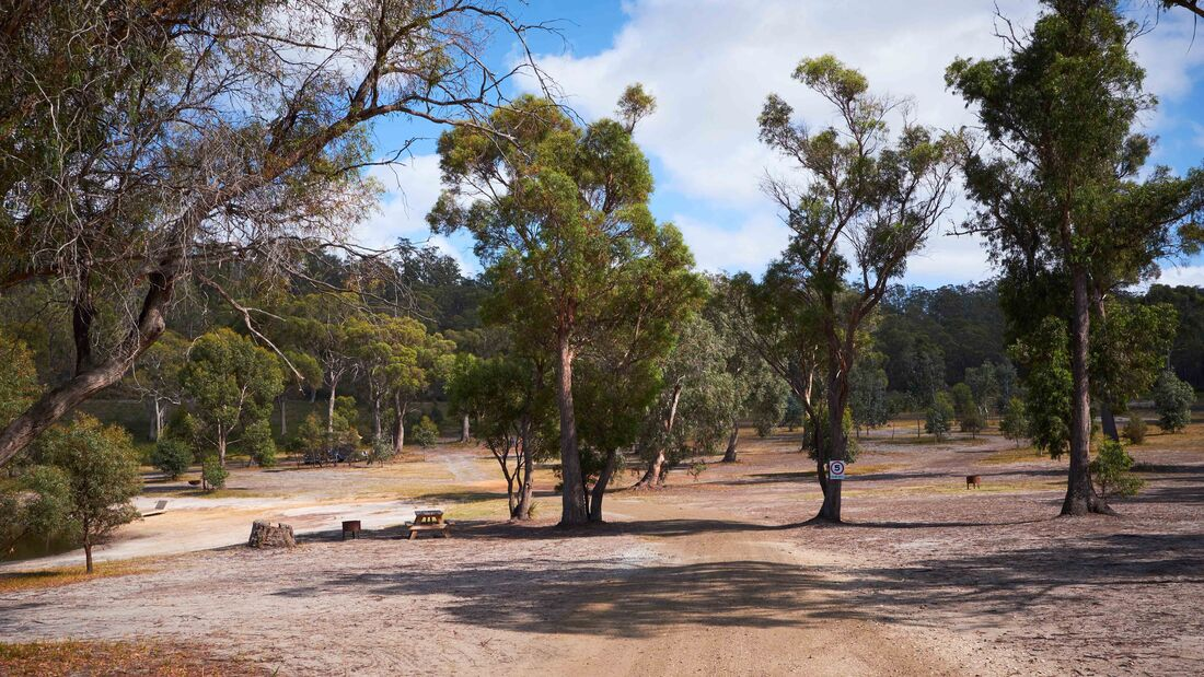 Free Camp, Tasmanien