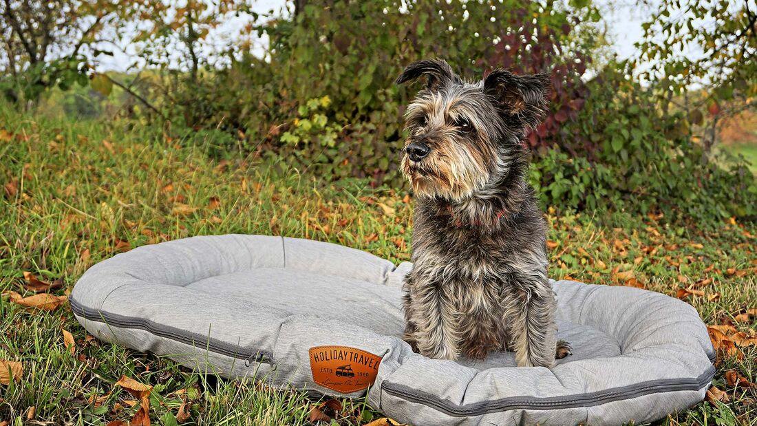 Hundezubehör Wohnmobil
