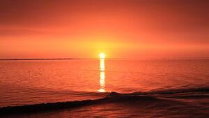 In diesem Sommer können Besucher am am Strand von Neuharlingersiel ein Naturphänomen, das Meeresleuchten beobachten. Dabei leuchtet das Meer unter sternklarem Nachthimmel in grün-blauen Nuancen.