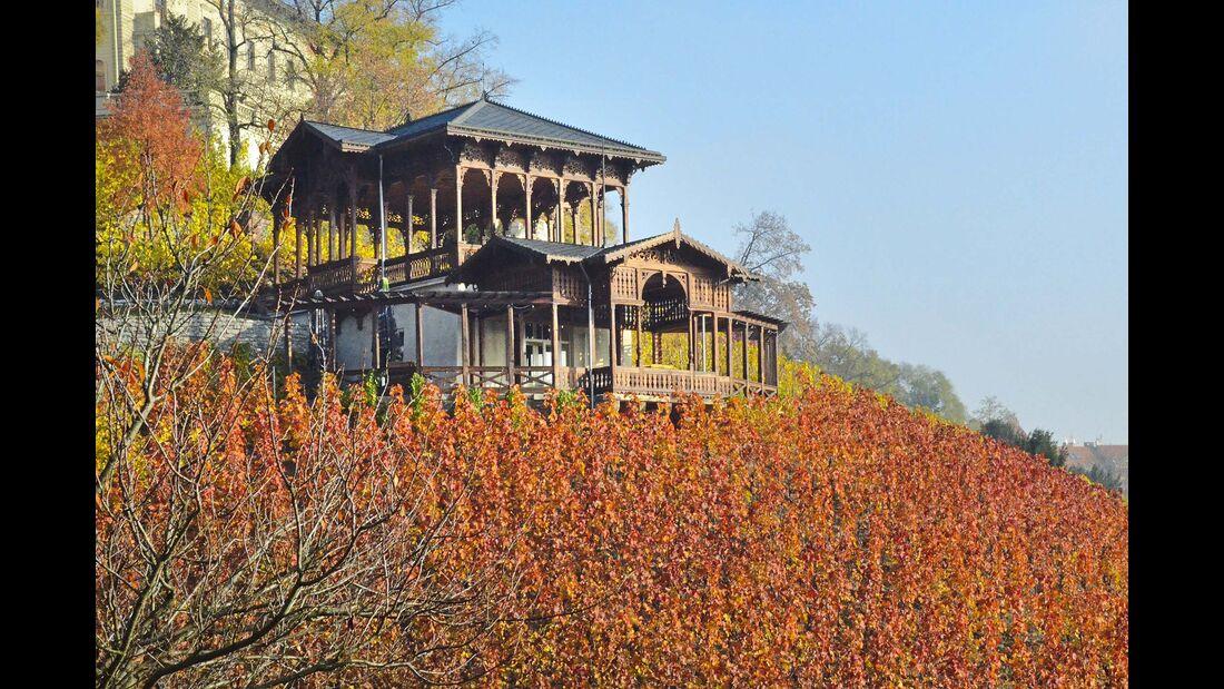 Jenseits des Bieres: der Weinpavillon im Havlickovy sady, mit Weinberg mitten in Prag.