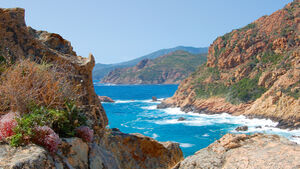 Küste von Korsika