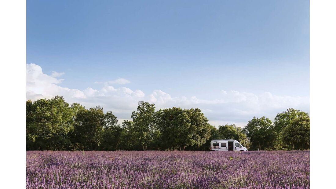 Leser auf Tour Provence