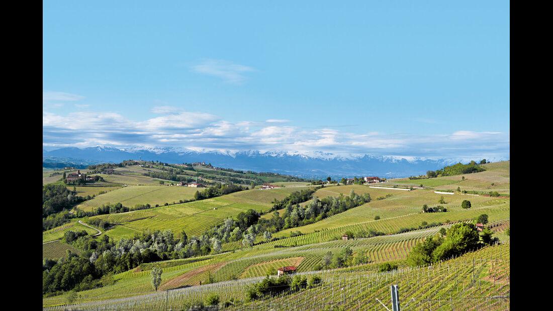 Mobil-Tour: Piemont, Weinberge der Langhe