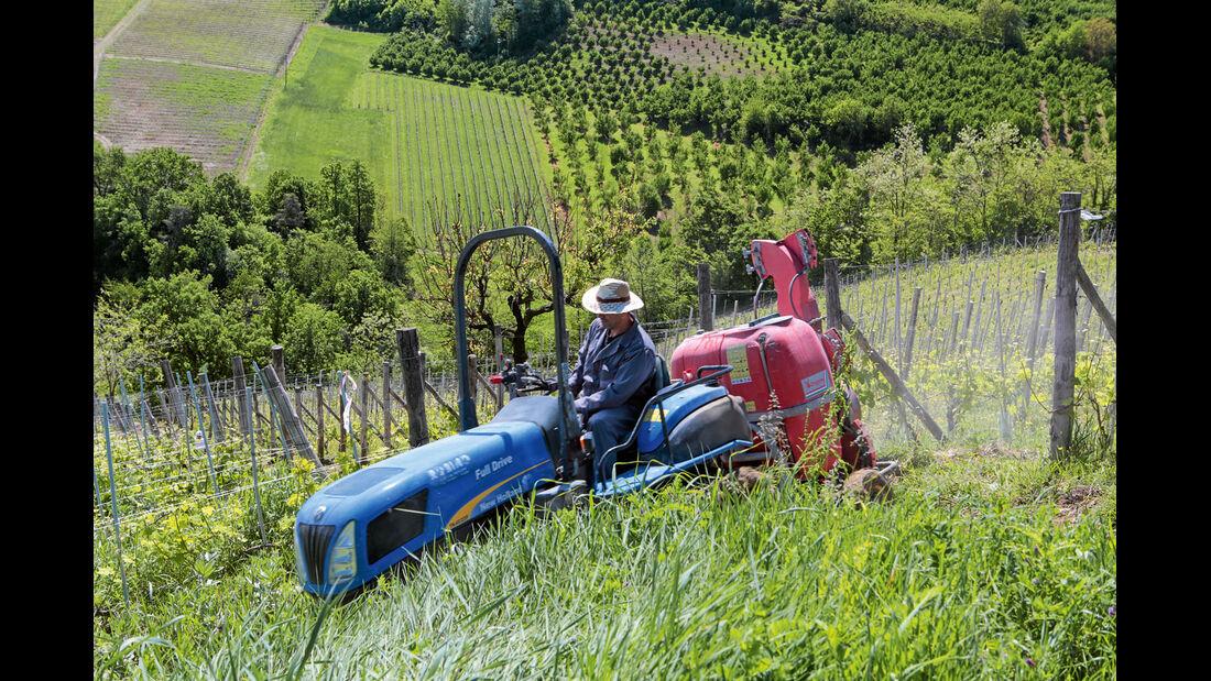 Mobil-Tour: Piemont, Winzer