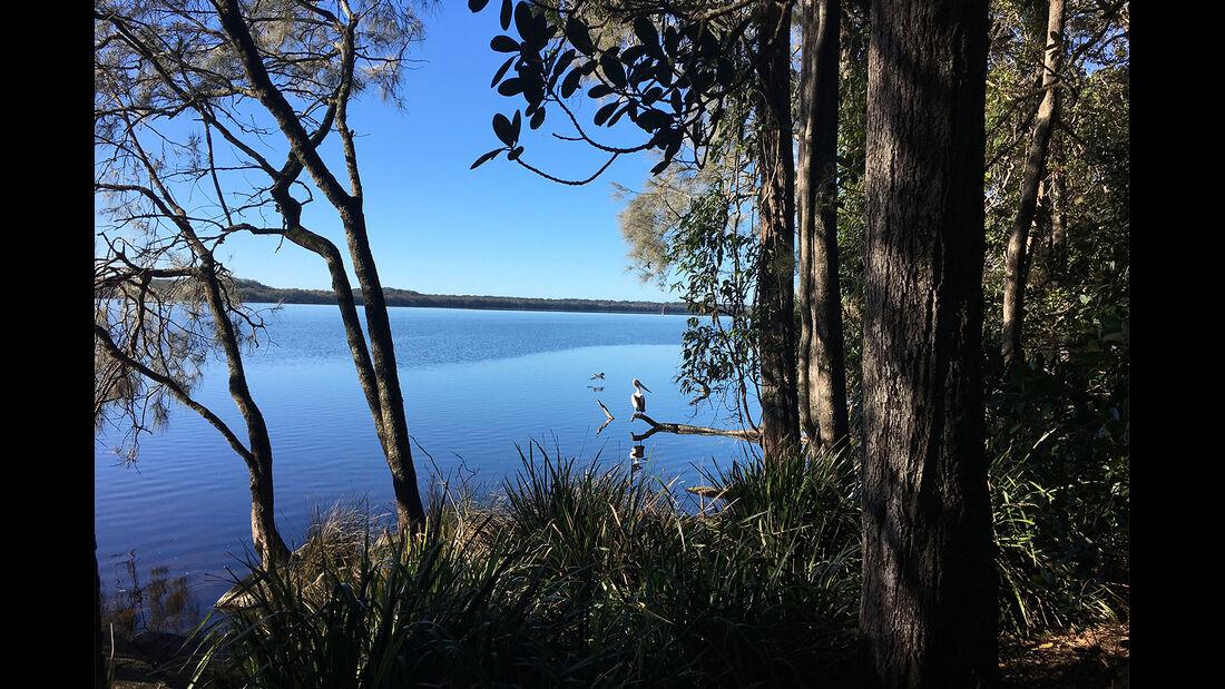 Myall Lake mit dem Kanu