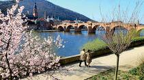 Neckarpromenade in Heidelberg.