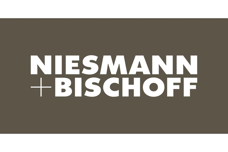 niesmann bischoff promobil. Black Bedroom Furniture Sets. Home Design Ideas