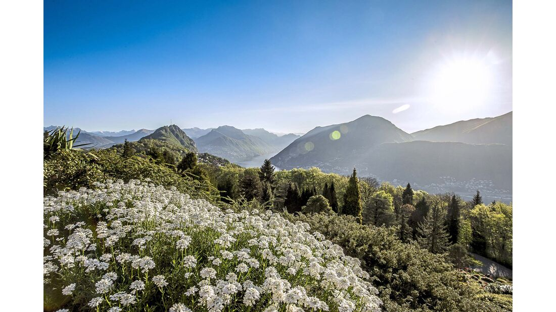 Parco San Grato Tessin