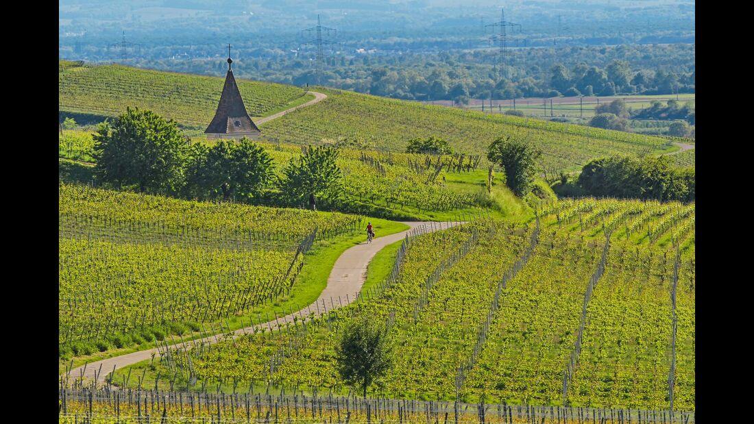 Radtour über die Hügel und Weinberge des Markgräflerlands von Schliengen via Feldberg bis nach Auggen.