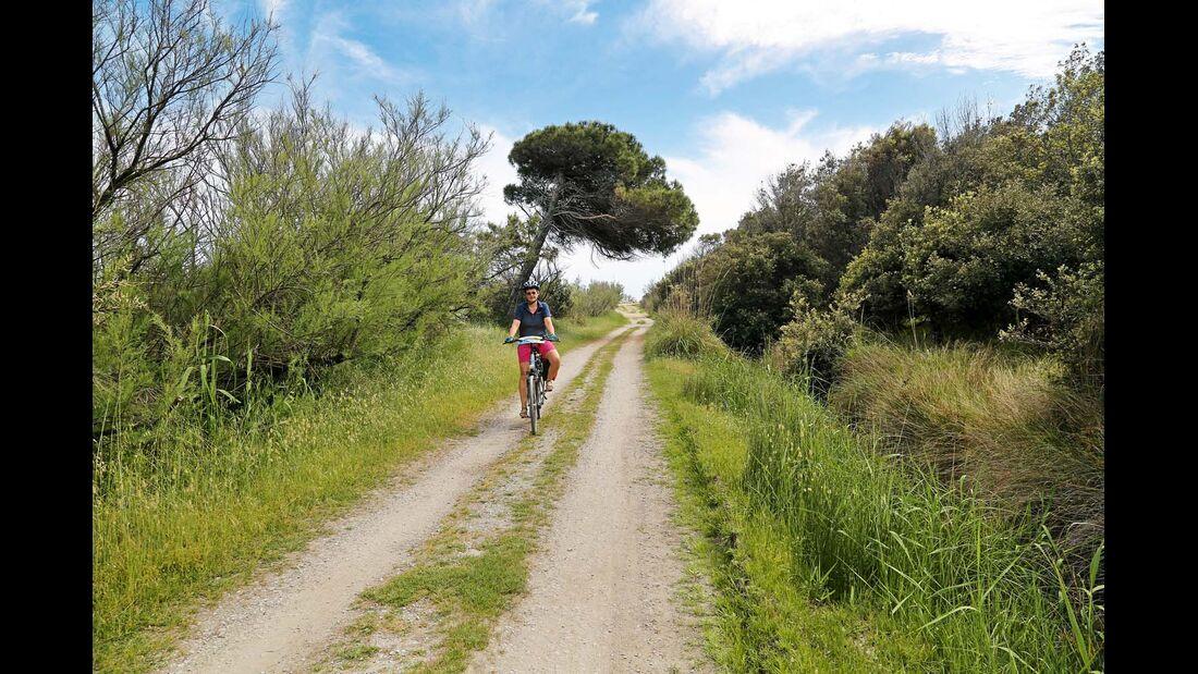 Radweg zum Lido di Volano