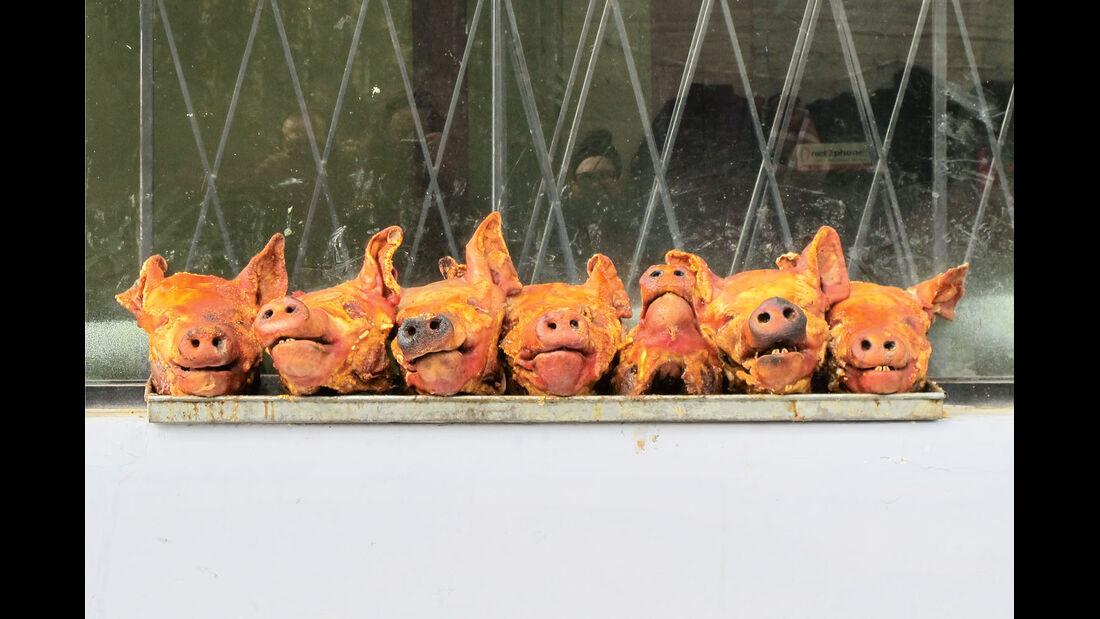 Ratgeber: Mobile Menschen, Petra und Klaus Vierkotten, Frittierte Schweineköpfe