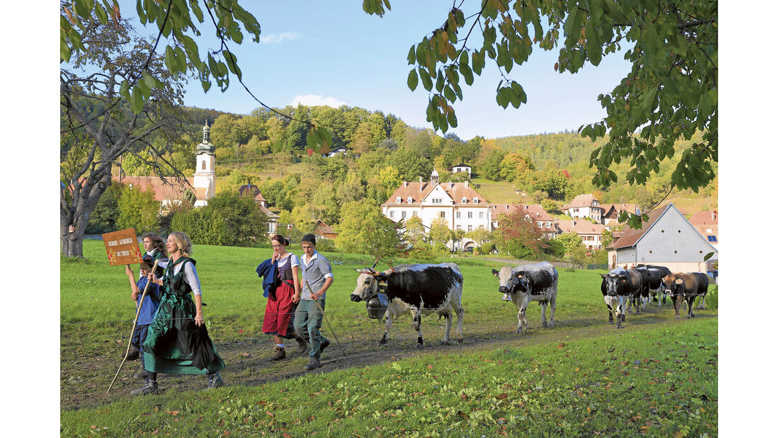Reise-Tipp: Südliches Elsass