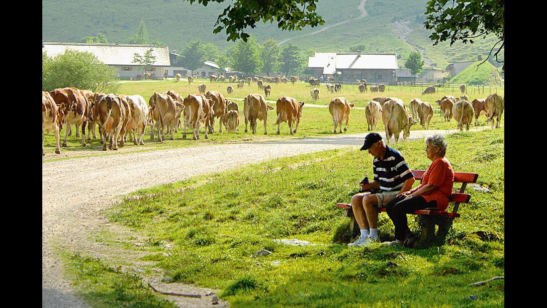 Reise-Tipp: Tirol