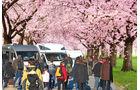 Report: Frühjahrs-Neuheiten