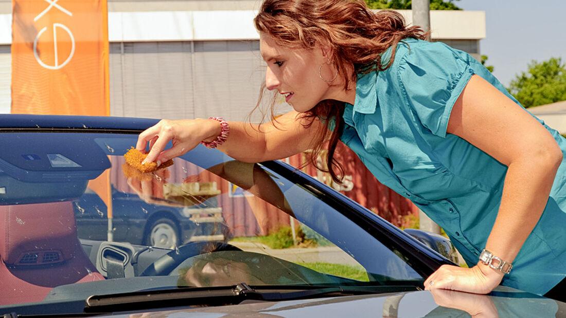 Sieben Reinigungszusätze gegen Sommerschmutz auf der Autoscheibe als 1:100-Konzentrate auf dem Prüfstand