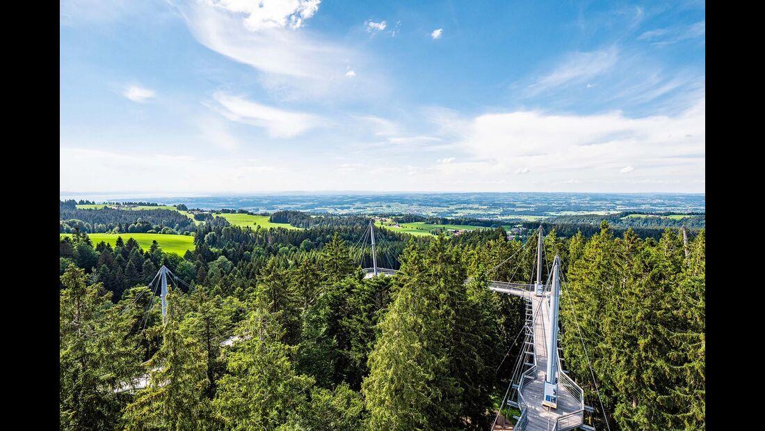 Skywalk Allgäu in Steibis