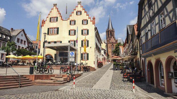 Stellplatz-Fokus Rheinhessen
