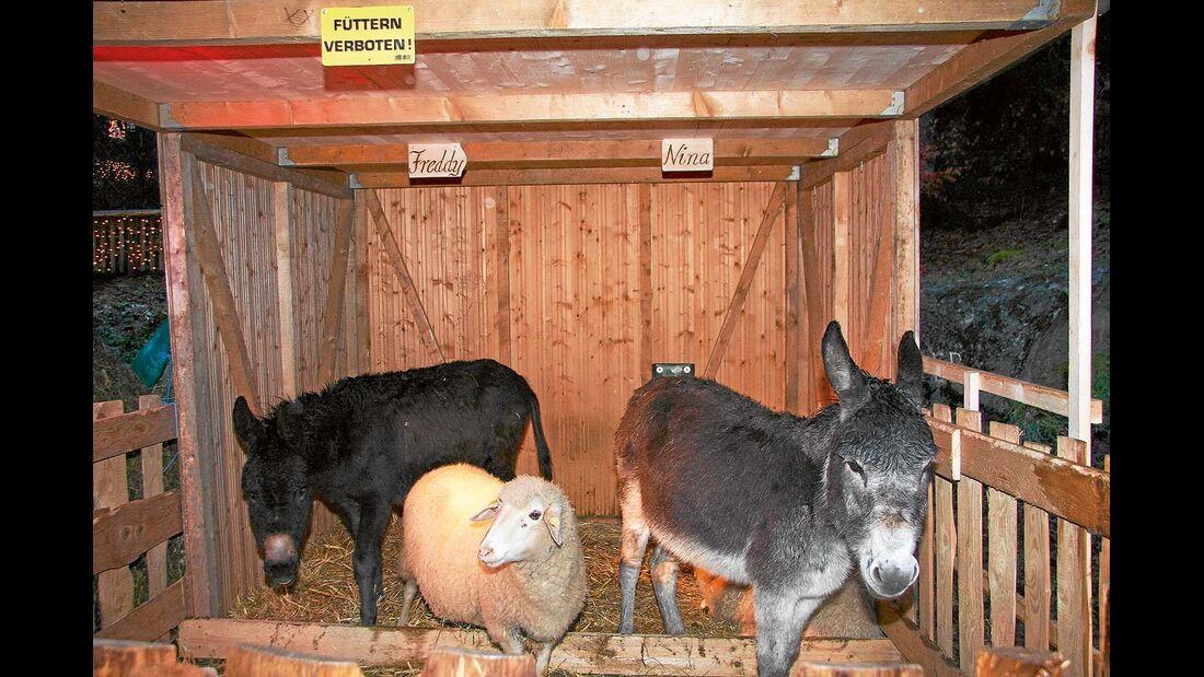 Tierweihnacht in Triberg.