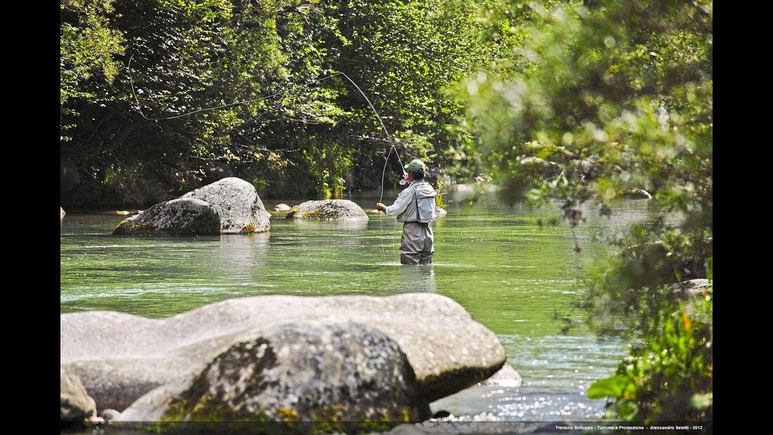 Trentino Angler