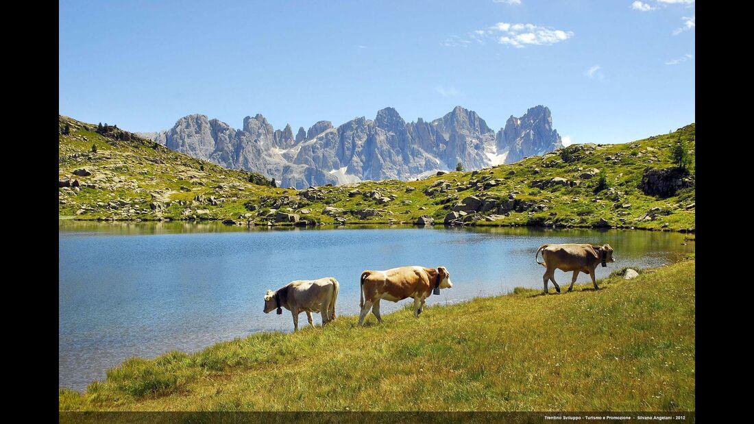 Trentino Naturpark