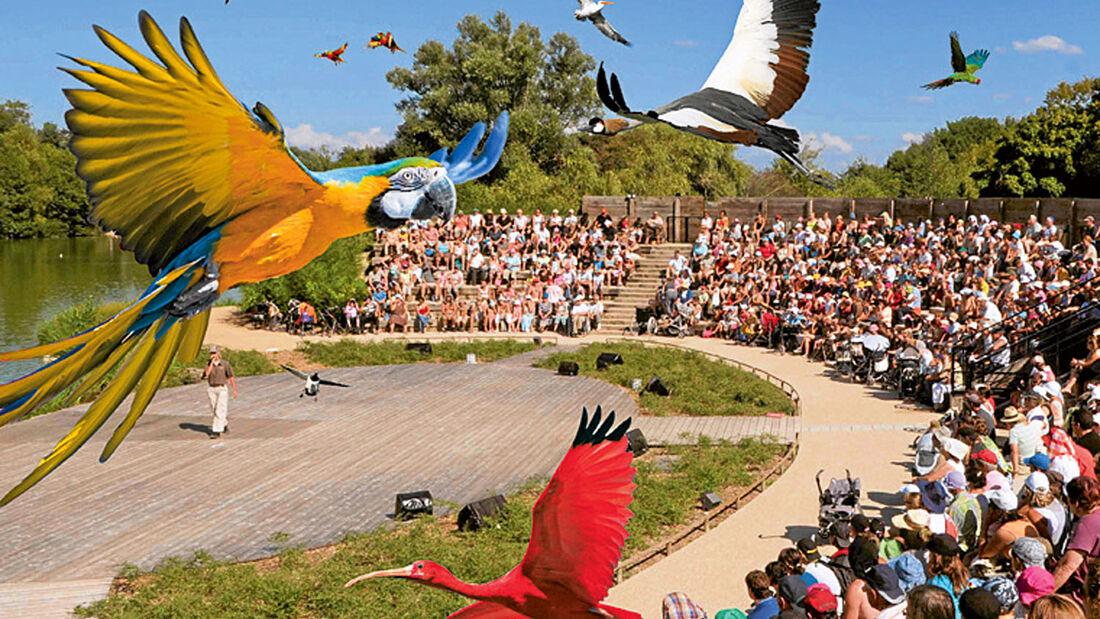 Vogelpark Frankreich