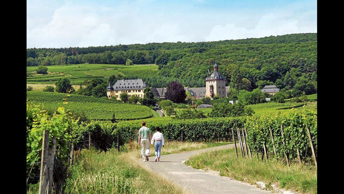 Vorbei an zahlreichen Weingütern führt der Flötenweg durch die Weinberge