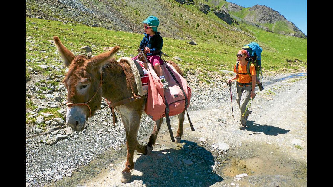 Wanderer mit Esel