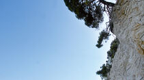 Wanderweg zur Cala Vignanotica