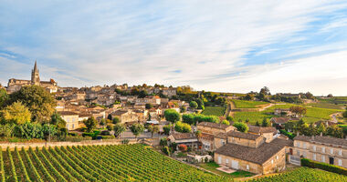 Weinreben bei Saint-Émilion