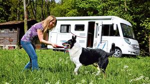Wer mit seinem Haustier ins Ausland reisen möchte, hat eine Reihe von Vorschriften zu beachten. Innerhalb und außerhalb der EU gelten unterschiedliche Einreisebestimmungen für Tiere.