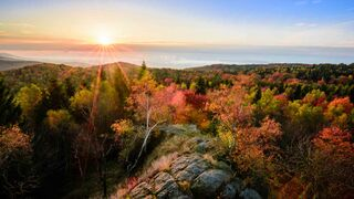 sunset and rocks in autumnal forest
